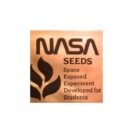 Sementes Expostas ao Espaço - NASA (1984)
